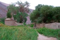 5. Hacienda en Potrero de La Iglesia, quebrada de Paipote, Copiapó.
