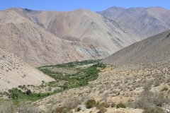 2. Valle del Huasco Alto, sector quebrada de Colpe.