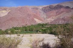 3. Quebrada de Pinte, afluente del río Tránsito, Huasco Alto.
