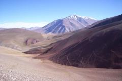 6. Piso alto andino, quebrada de Zepeda, Huasco Alto.