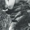 kaweshqar-00011
