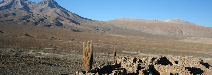 tiwanaku-en-el-norte-de-chile-700