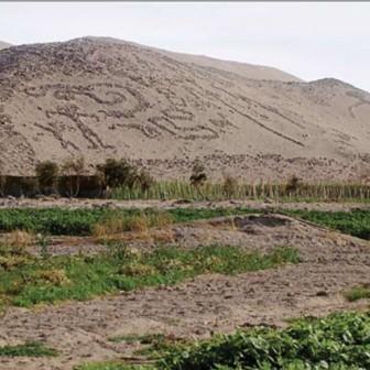 Pampa Alto Ramírez, valle de Azapa, (foto: C. Sinclaire). (Inkas 2009)