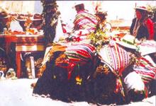 Sonidos del Cancosa Anata 2005